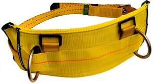 DBI-SALA 1000543 Derrick belt, work positioning D-rings, tongue buckle type, use w/1105827 derrick harness (MED) by Capital Safety